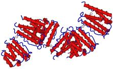 Human Interferon Alpha 2b