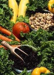 Antioxidantien helfen nicht, schwanger zu werden